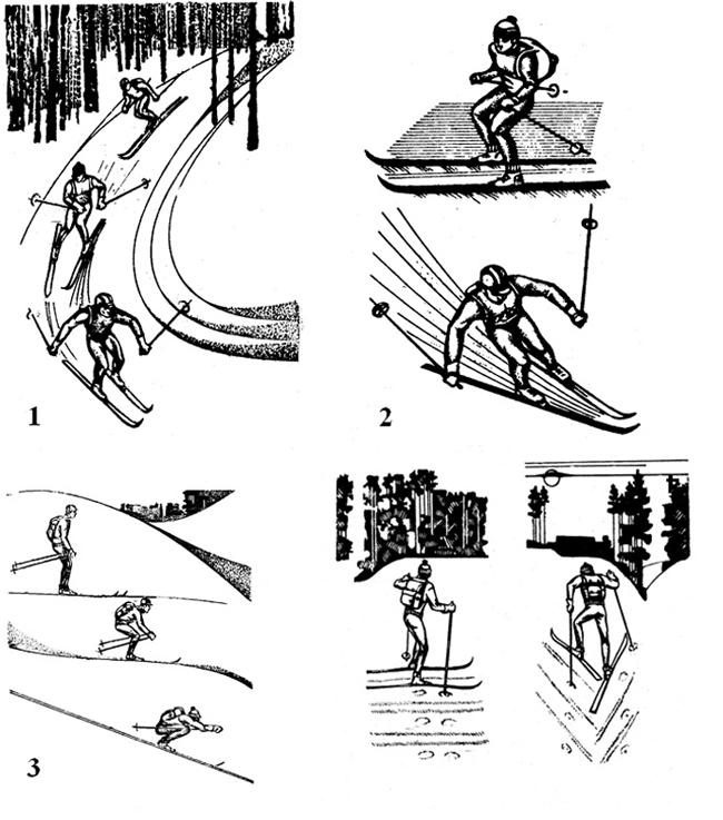 Техника движения на лыжах;