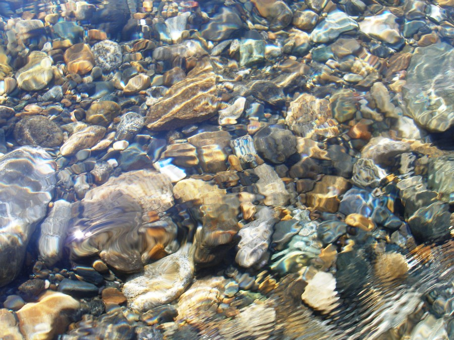 Фотография: Дно реки