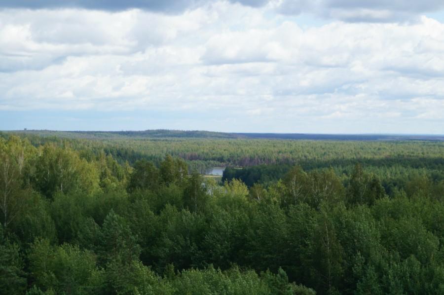 Русло древней реки.Озера Исиевское, Долгое. На горизонте гора Долгая.
