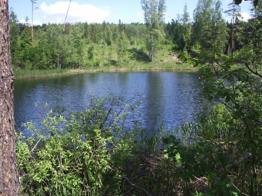 Озеро Черное (Шатковский район), фото 3