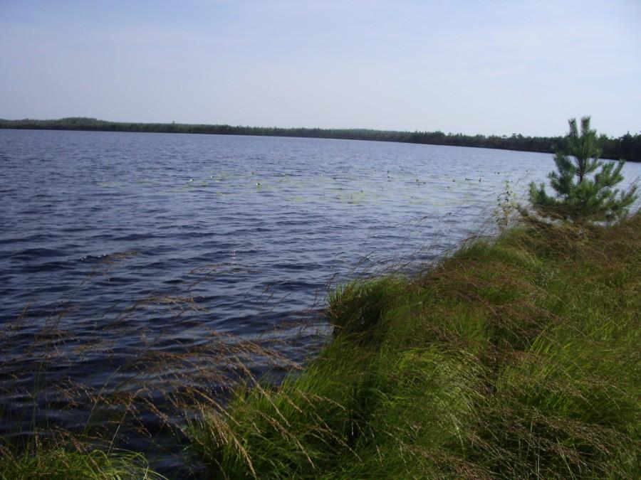 Озеро Варех (Володарский район), фото 2