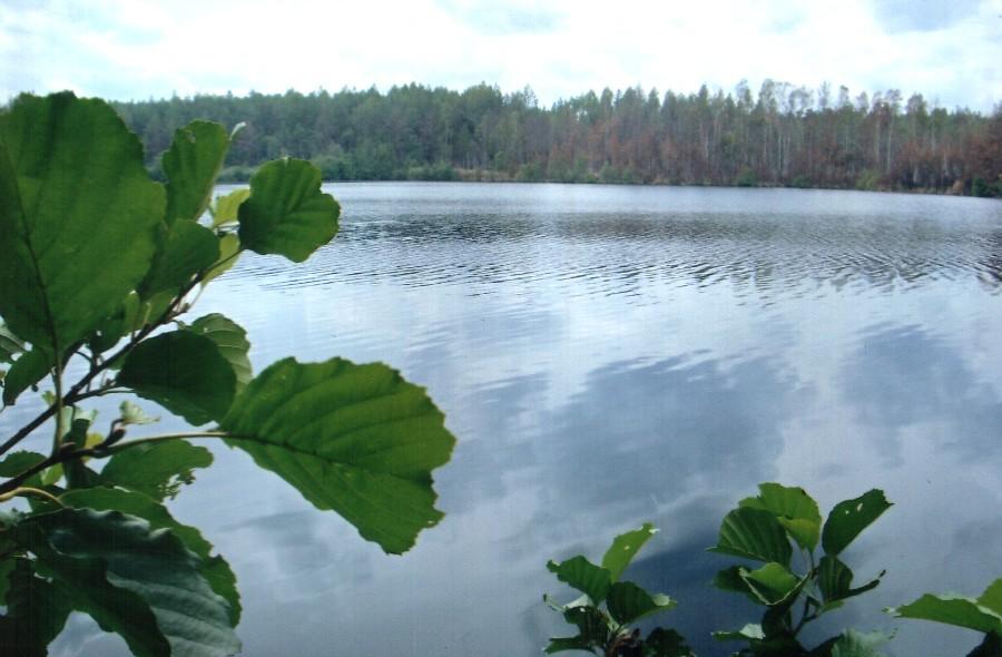 озеро рассохи рыбалка