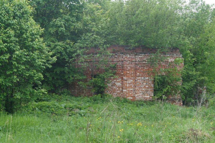 Многие здания усадьбы буквально заросли лесом