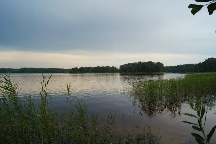 Озеро Большое Святое Дедовское, вид с северного берега. Фото 4