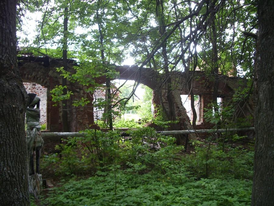 Усадьба Храповицкого. Происходит разрушение памятника архитектуры