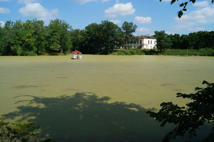 Главный пруд с плавающей беседкой, фото 2