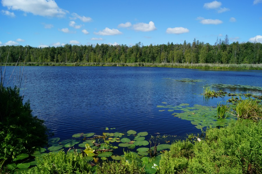 Озеро Изъяр. Фото 1