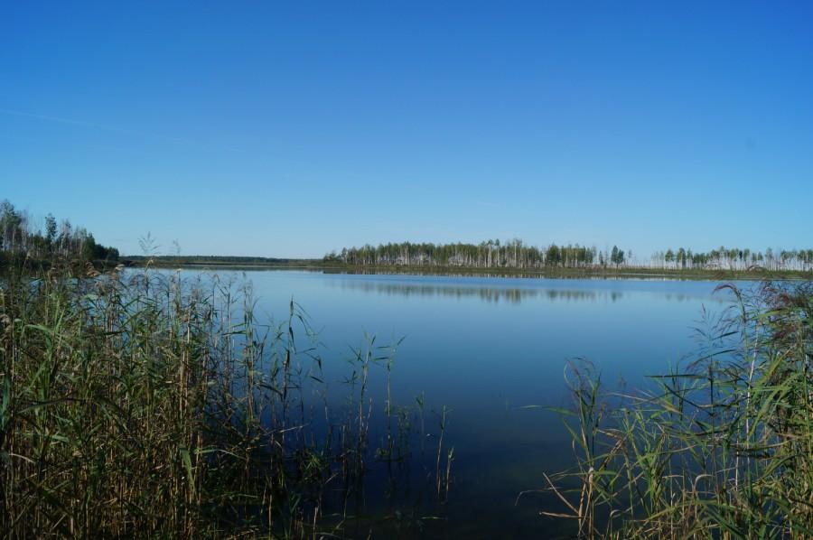 Озеро Камское. Фото 2