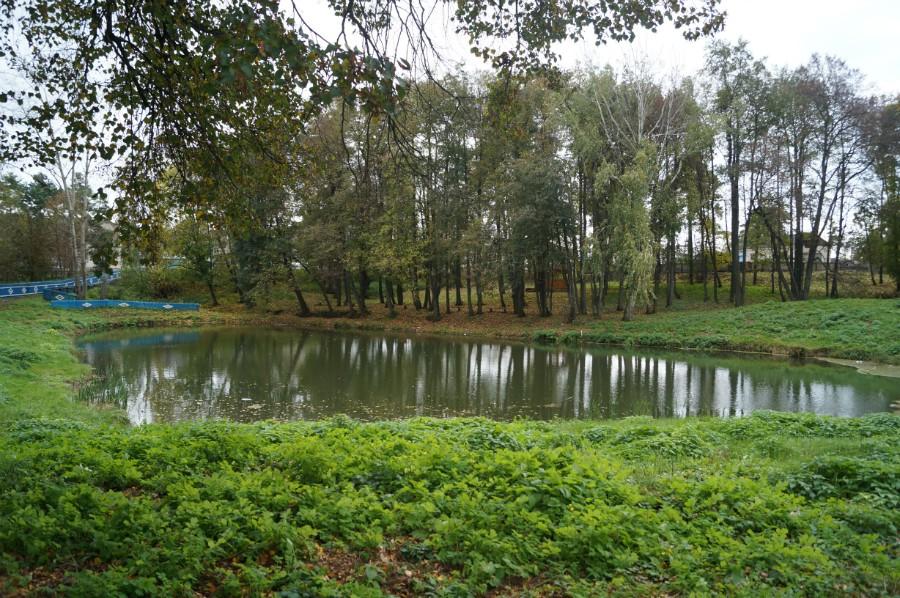 Небольшой водоем рядом с усадьбой Нейдгарта