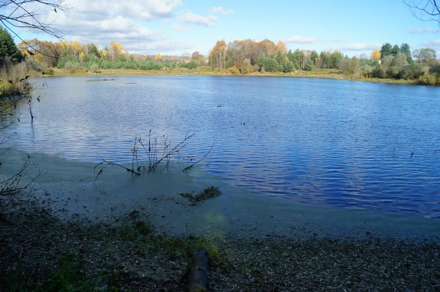рыбалка на лебедином озере сосновский район
