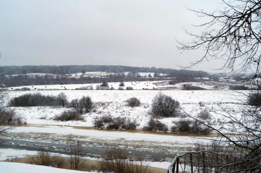 Вид на реку Сороть