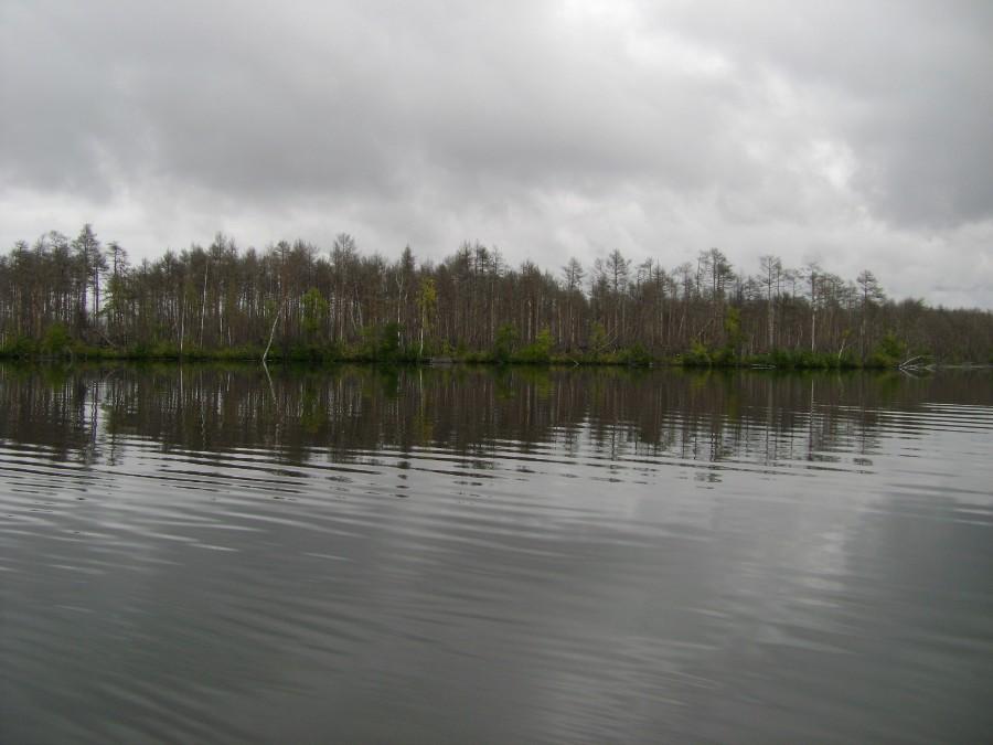 рыбалка в линево курганская область