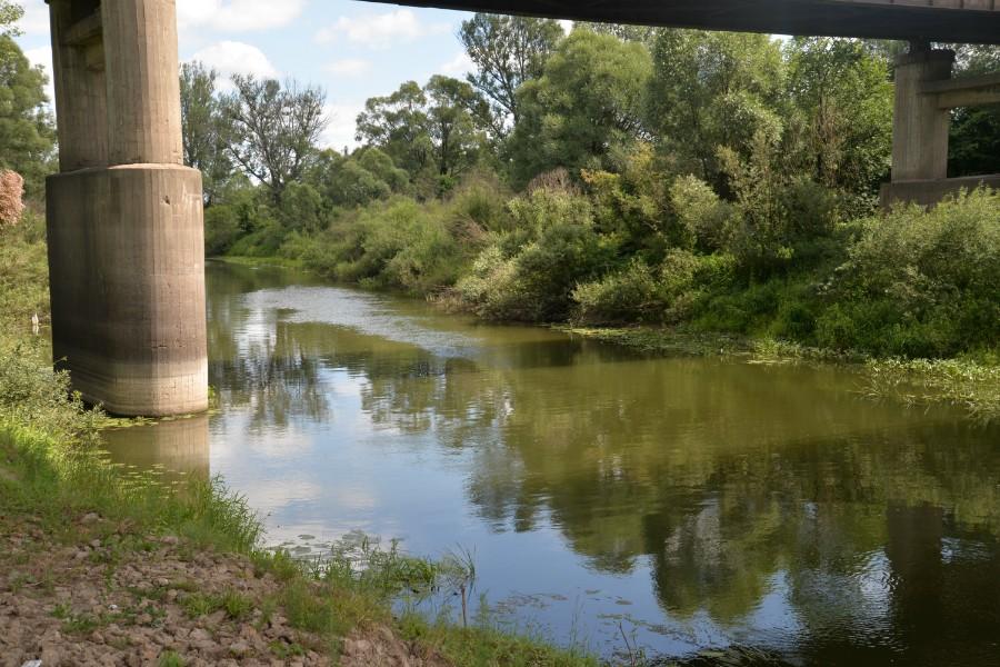 кудьма река в нижегородской области рыболовные места