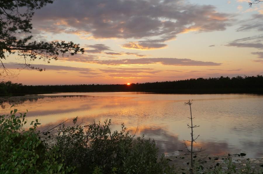 Пешие походы по Камским озерам Нижегородской обл. . Фото 132