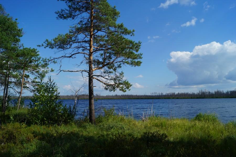 Пешие походы по Камским озерам Нижегородской обл. . Фото 167