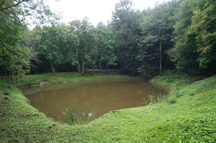 Вид на пруд от домика Лешего