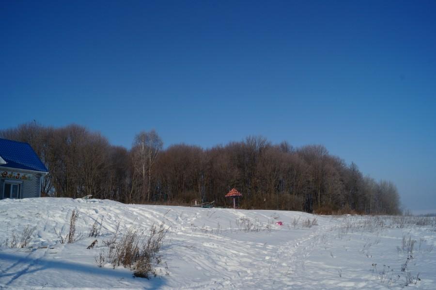 Давно переродившиеся остатки Улыбышевского парка