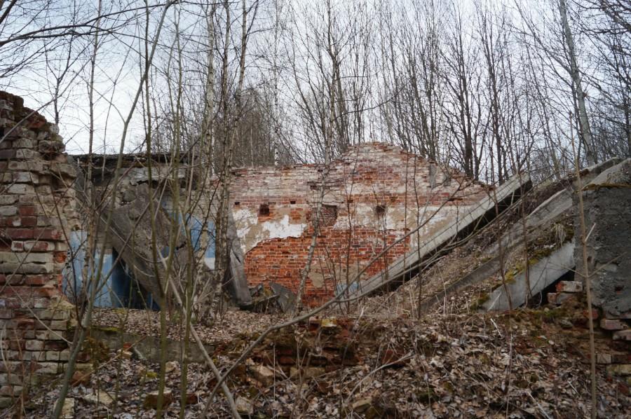 Руины усадьбы помещиков Языковых-Шестаковых (с.Монаково, Навашинский р-н)