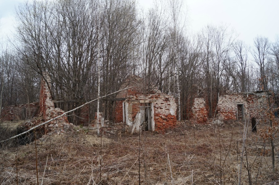 Руины детского дома в Монаково. Территория бывшей усадьбы Языковых-Шестаковых фото 2