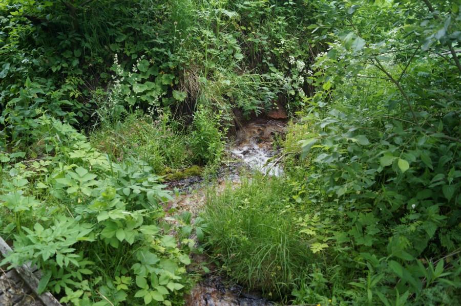 Ключевской водопад образуется от множества бьющих из-под холма ключей