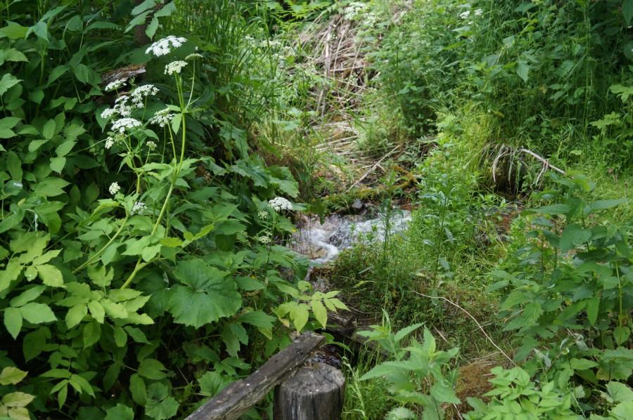Журчащий Ключевской водопад фото 2