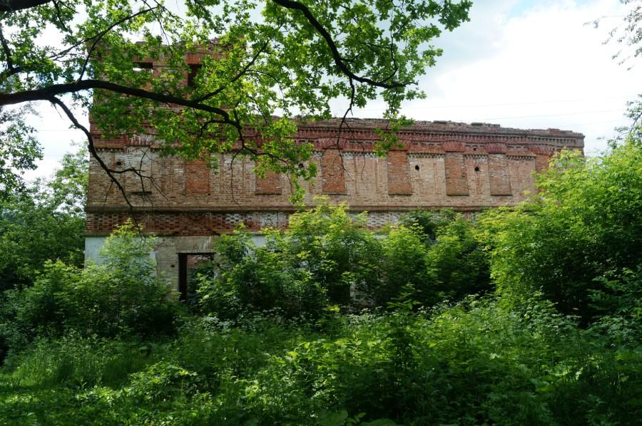 Руины замка Оболенских.