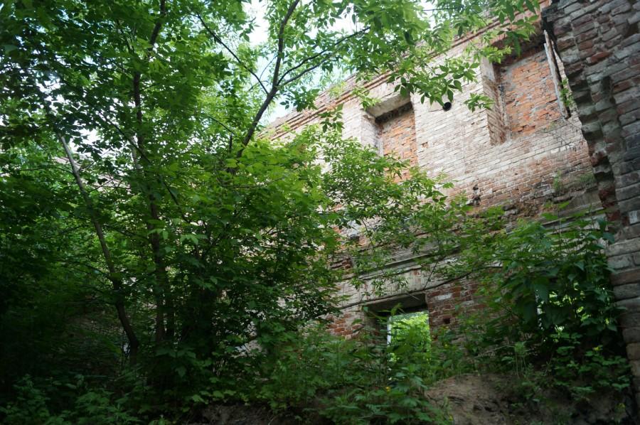 В руинах замка Оболенских