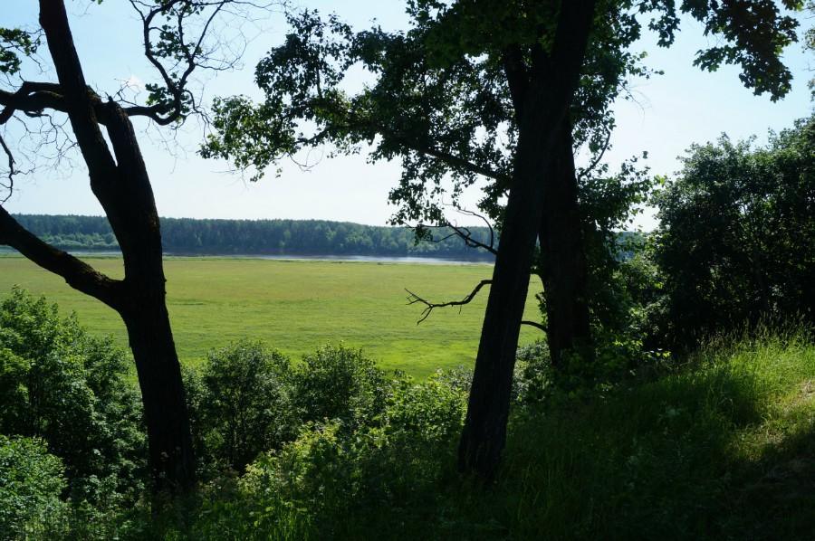 Вид на Ветлугу от дома С.Н. Беляева