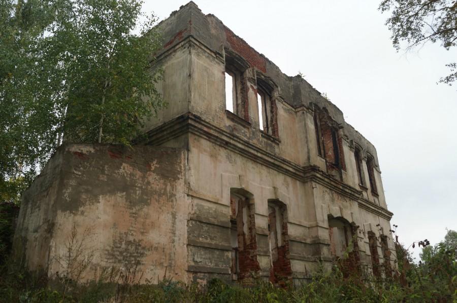 Все что осталось от усадьбы Нейгарда в поселке им. Джержинского (Перевозкий р.