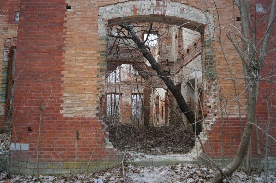 Руины усадьбы Оболенских в Березичах