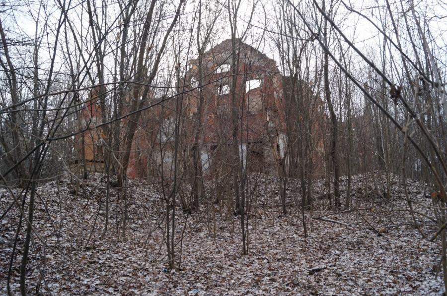 Руины усадьбы и парка Оболенских в Березичах