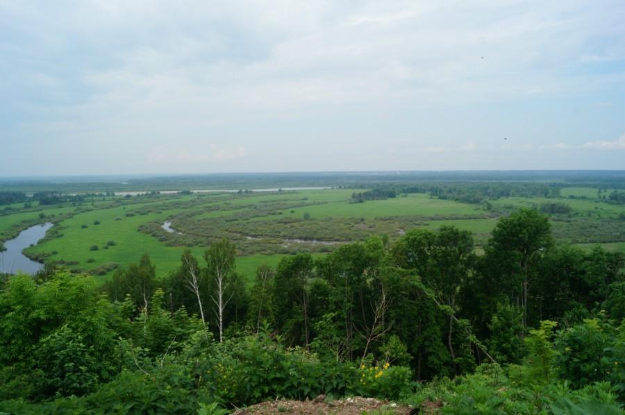 Вид на пойму реки Ока в Подвязье фото 2