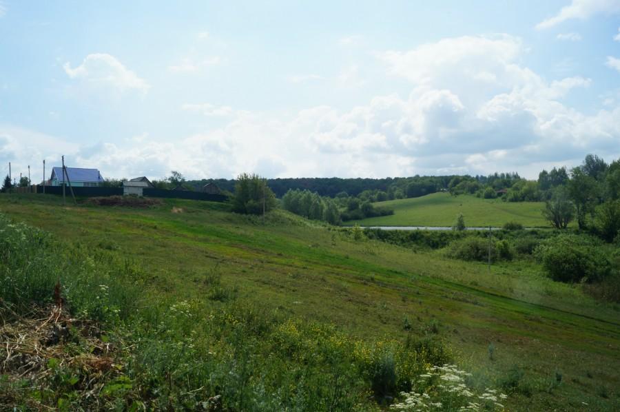 Вид на холм в селе Тарталей с остатками парка Званцевых