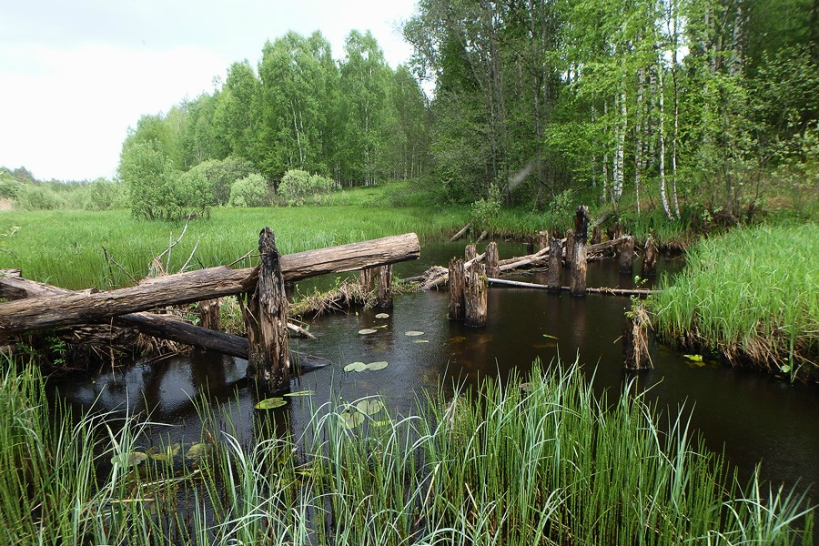 Останки моста
