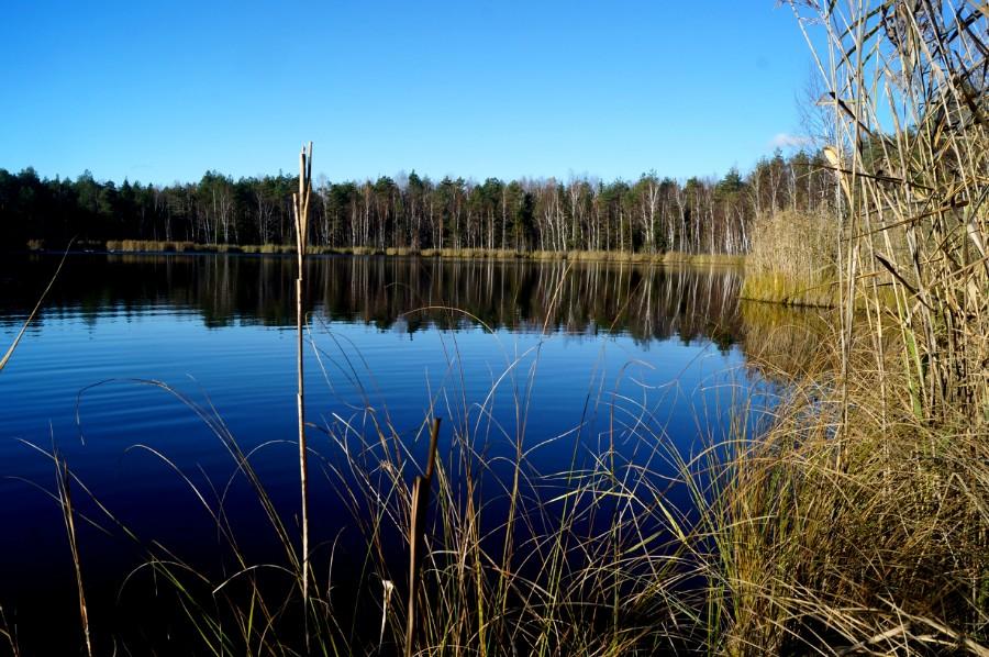 Озеро Черное в 4-х км к западу от Клушино (Семеновский район)