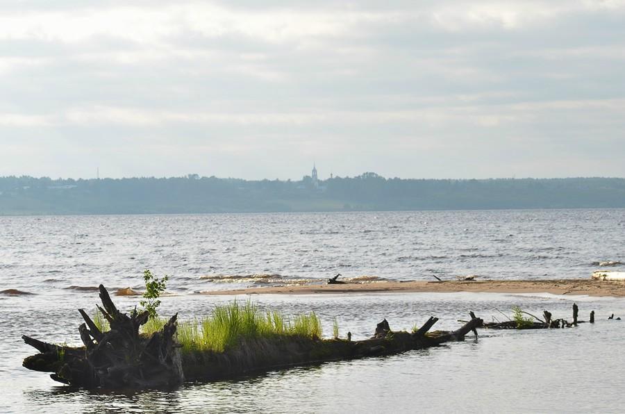 Унжа недалеко от устья