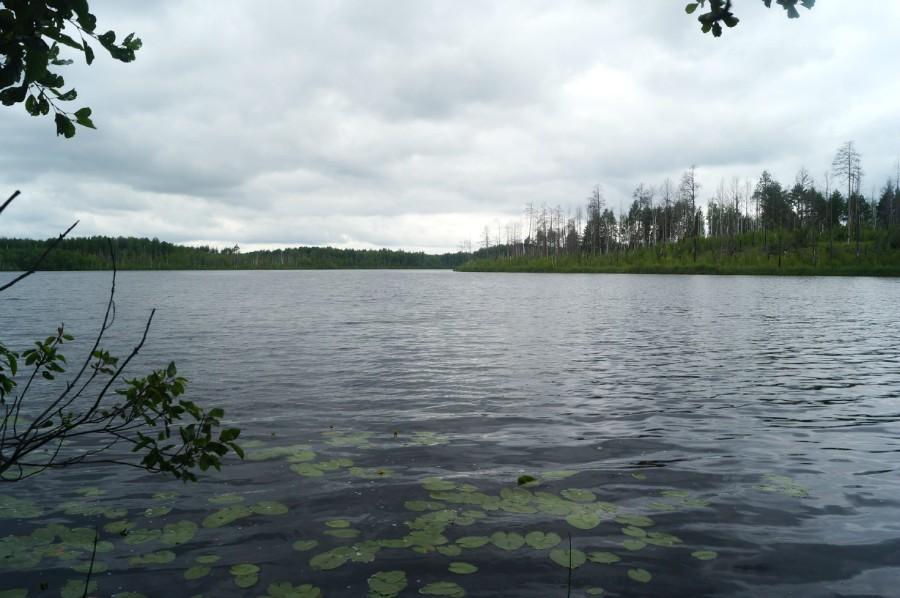 Озеро Большой Культей от источника
