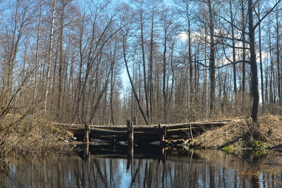 Шестой мост (на месте бывшей узкоколейки)