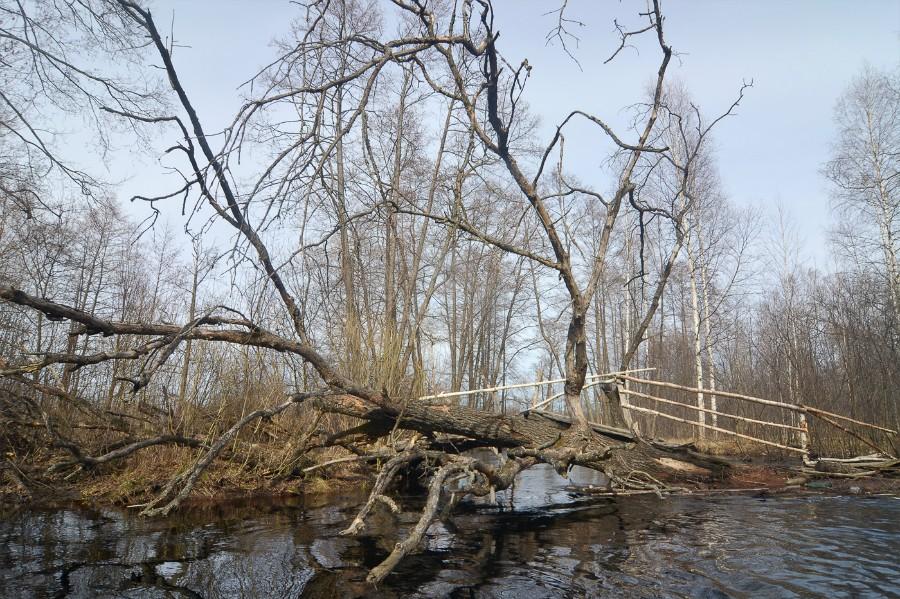 Завал-мостик в деревне Галкино