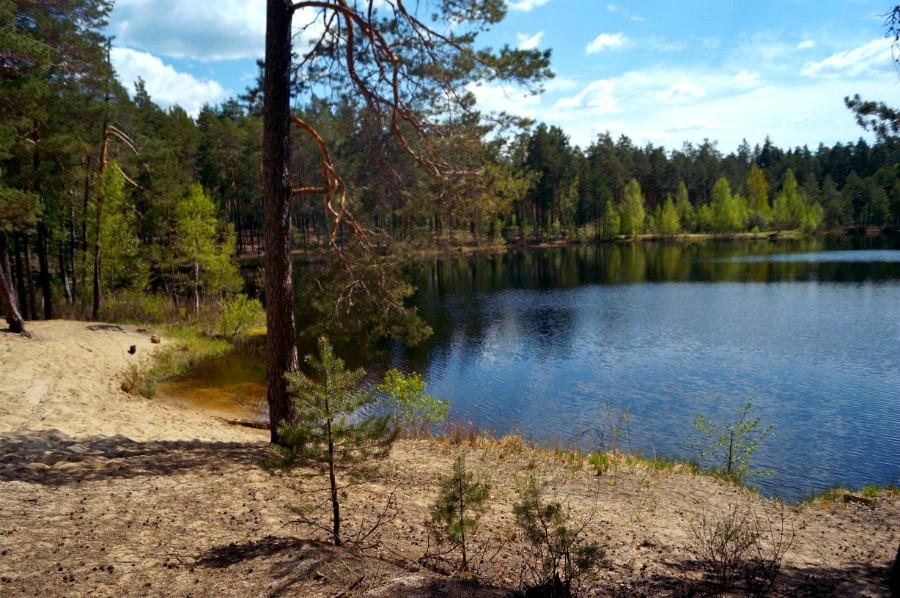 Озеро Дерганово (Навашинский район)