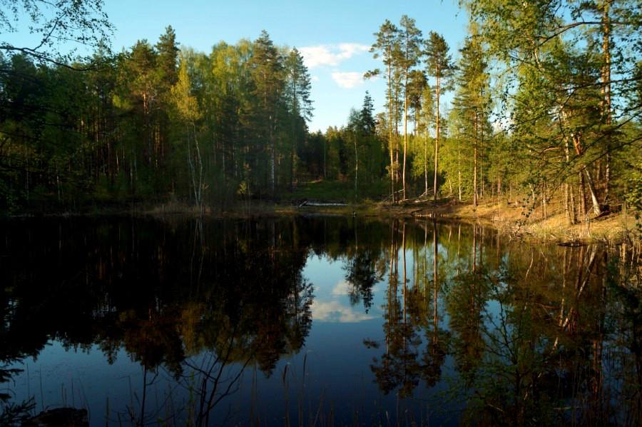 Озеро Карасное в 5 км к юго-востоку от п. Мухтолово