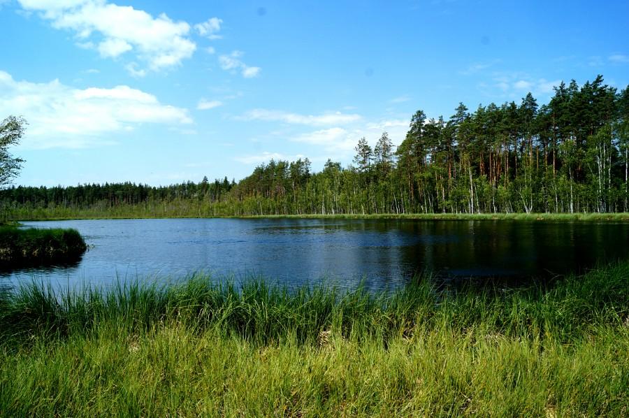 Живописное озеро Лебяжье