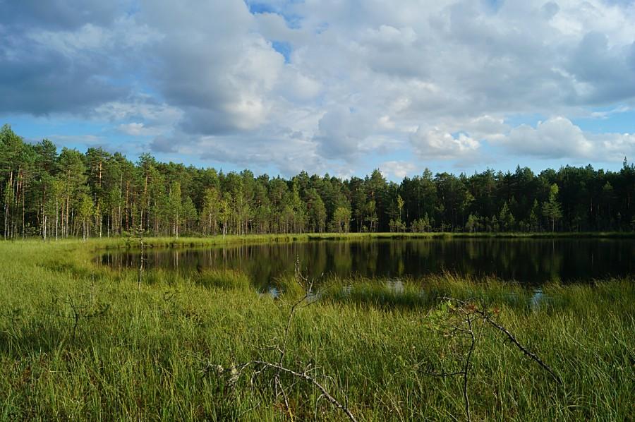 Вечер на озере Соловецком