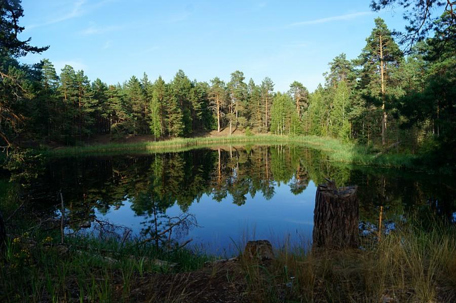 Озеро Зеленая Яма (Зелёное, Горское). Сосновские озера