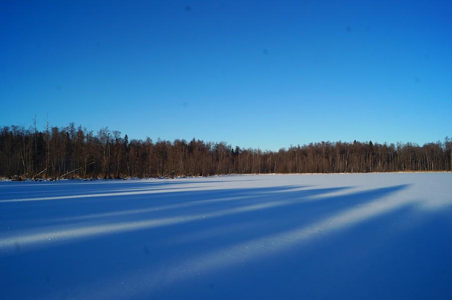 Озеро глубокое (Павловский район) фото 2