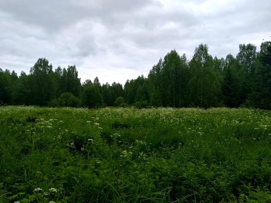 п. Красный Луч (Варнавинский район) - река Белый Лух